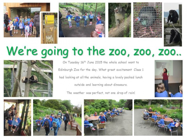 Edinburgh Zoo School Trip